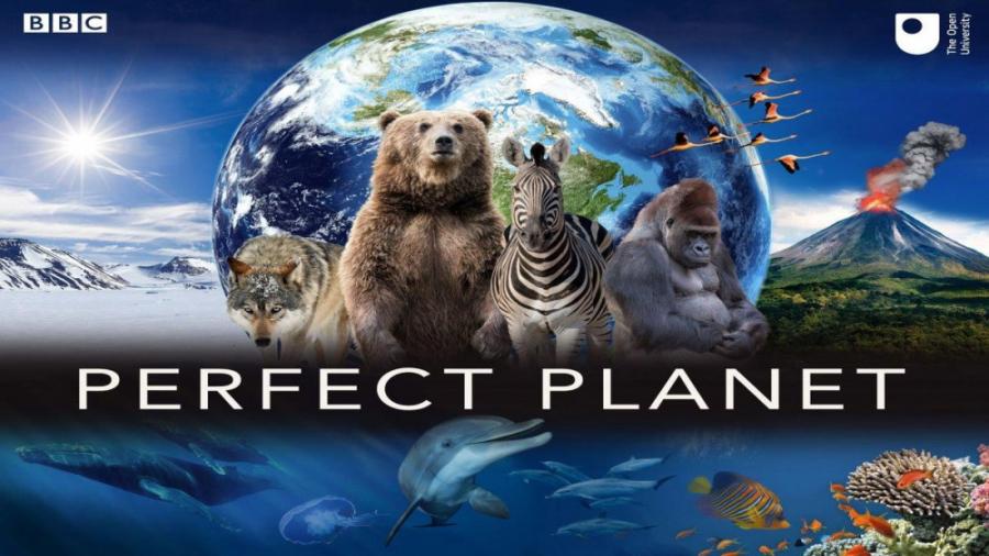 یک سیاره بی نقص (مستند)