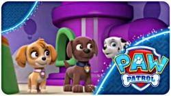 سگ های نگهبان دوبله فارسی - مسابقه بهترین سگ - انیمیشن گشت پنجه ای
