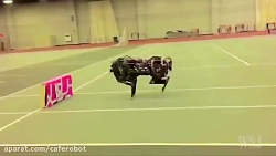 ربات چیتا-کافه ربات