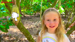 برنامه کودک و کارتون کودکانه