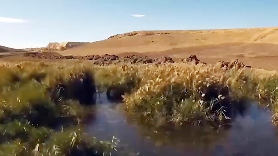 برنج کاری در زمین تشنه خوزستان