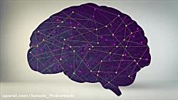از چند درصد مغز خود استفاده می کنید؟ - دوبله فارسی