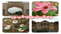 ولاگ گردشگری در شیراز