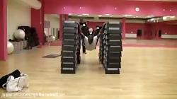 جالبترین حرکات ورزشی و سرگرم کننده  کارهای غیر ممکن