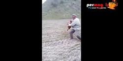 مستند حمایت از سگ ها - شخص شکنجه گر سگ در گلستان دستگیر
