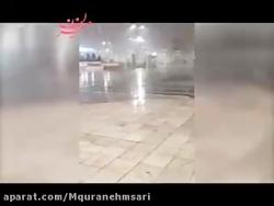سفیدپوش شدن حرم امام رضا (ع) در آستانه سال نو