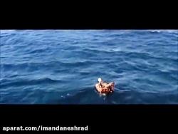 ویدئوی احساسی به زبان فارسی. شما محدود نیستی.