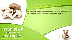 فواید قارچ خوراکی