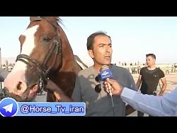 تلویزیون اسب و سوارکاری ایران - HORSE TV  IRAN