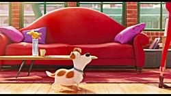 آنونس انیمیشن جدید و جذاب زندگی مخفی حیوانات خانگی