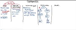 مروری بر هایپوتیروئیدیسم و هایپرتیروئیدیسم