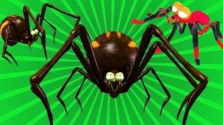 عنکبوت ریزه میزه شعر مهد کودک برای کودکان