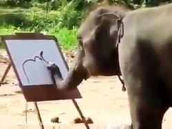 کلیپ بسیار جالب و دیدنی نقاشی کشیدن فیل از دست ندی