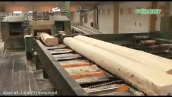 Polkky the largest private wood processing...