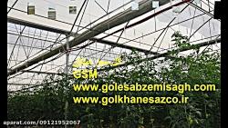 ساخت گلخانه هیدروپونیک ,گلخانه ساز,گلخانه اسپانیای