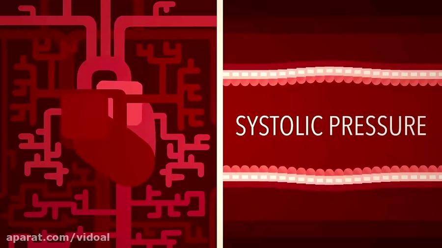 عملکرد-فشار-خون-ویدوآل