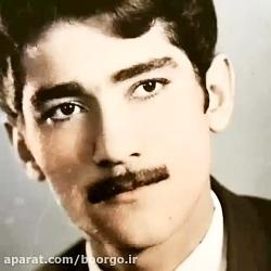 اجرای زیبای علی زندوکیلی برای پدرش