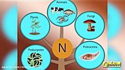 ویدیو نمایش چرخه نیتروژن فصل اول علوم نهم