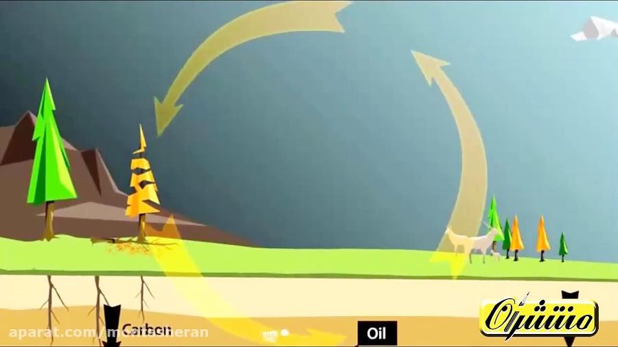 چرخه-کربن