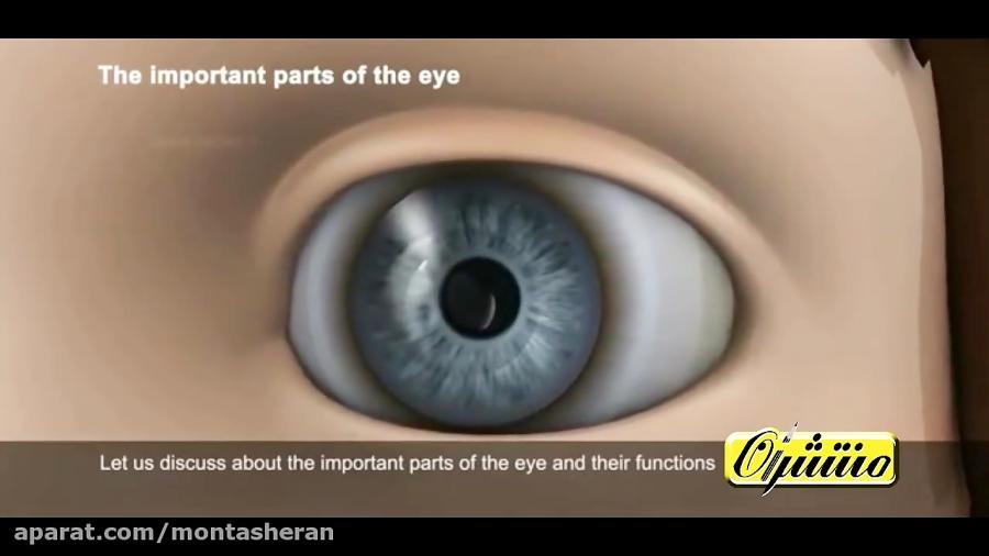 چه-خبر-بینایی-تدریس-منتشران