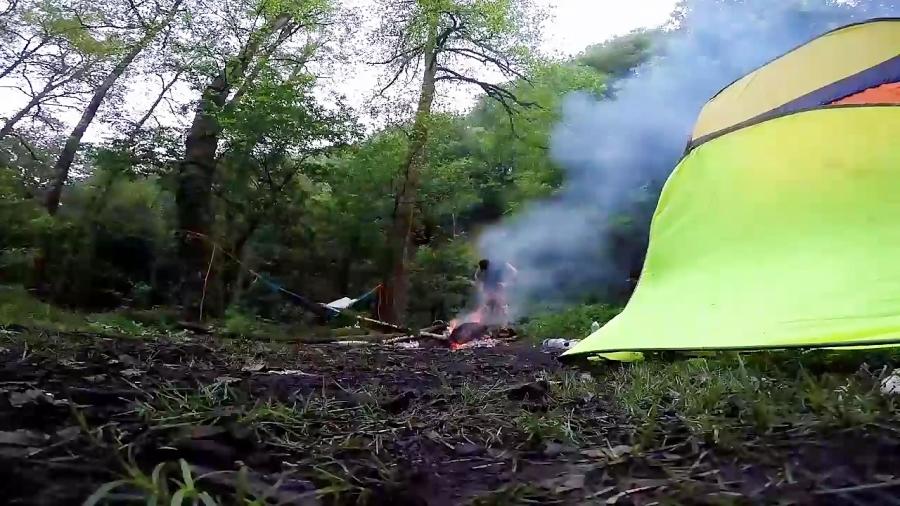 تایم لپس از روشن شدن هوا در جنگل