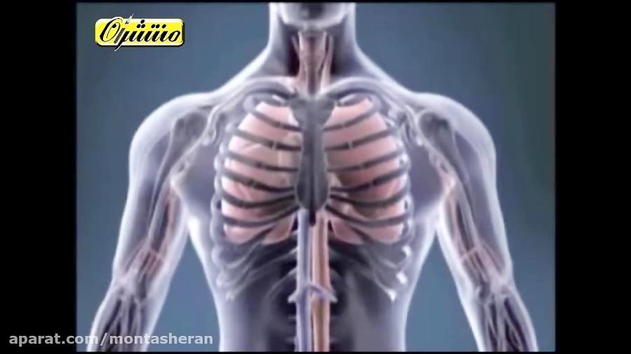 مبادله-و-حمل-اکسیژن-در-خون