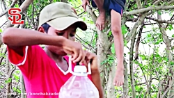 Amazing Smart Boys Make Snake Trap With Bo...