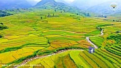 Eviva Tour Vietnam