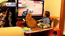 دوستی شیرین و بامزه بچه ها با گربه