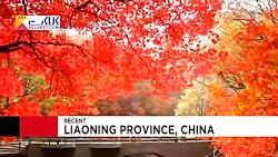 تصاویری از پائیز دیدنی چین با رنگهای خیره کننده طبیعت