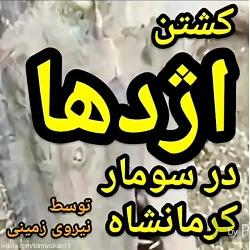 Hamidi64