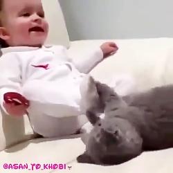 بازی گربه با بچه