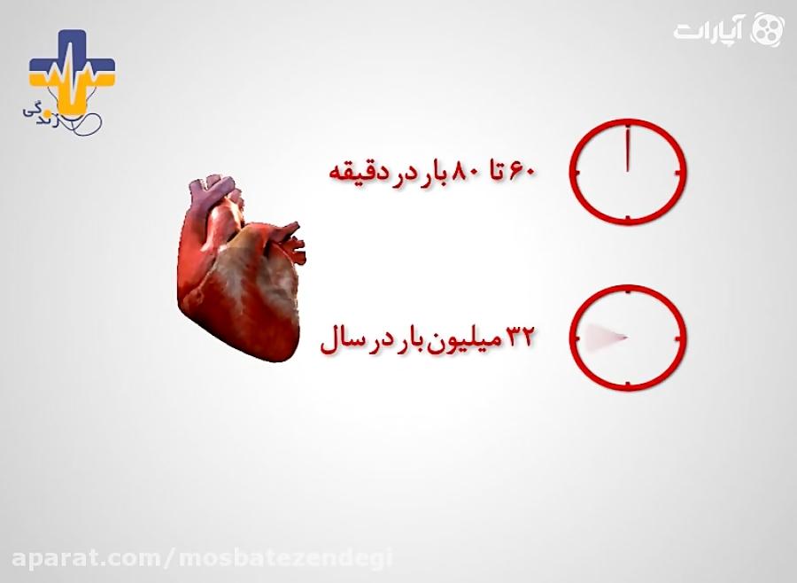 عملکرد-قلب-تدریس