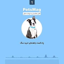 پادکست راهنمای خرید سگ - کانال تلگرام حیوانات خانگی