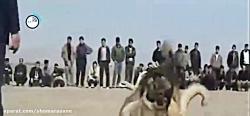 داستان قوی ترین سگ ایران، «سگ سرابی» را ببینید