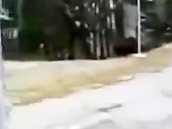 حوادث ترسناک و فاصله ثا...