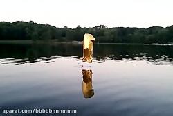Water skiing balloon