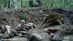 حمله زامبی ها به ببر در فیلم مردگان متحرک