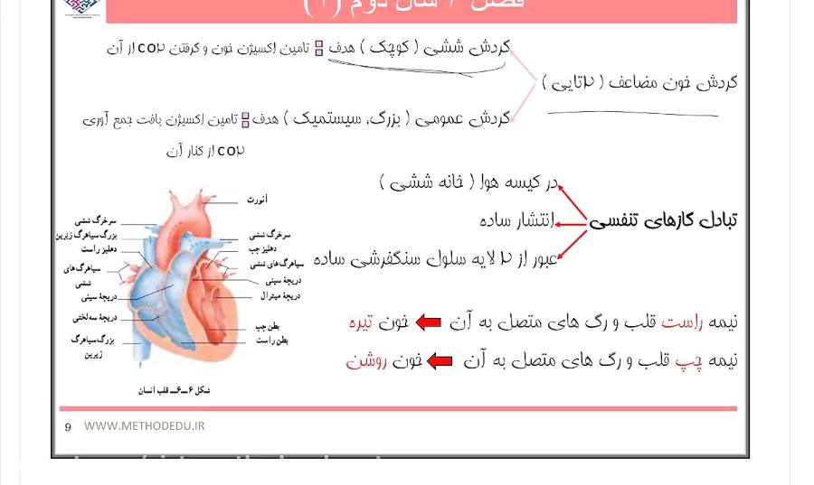 تدریس-ساختار-و-عملکرد-قلب