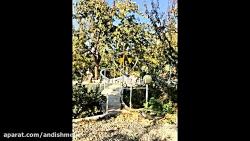 ۵۰۰ متر باغ ویلا داخل مجموعه ویلایی لم آباد شهریار