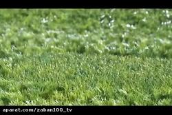 همایش ارتش هایما در مشهد