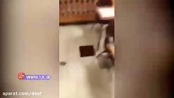 تصاویر دلخراش از داخل دبیرستان فلوریدا