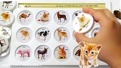 آموزش اسم حیوانات