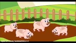 معرفی حیوانات