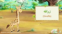 آموزش حیوانات وحشی به ک...