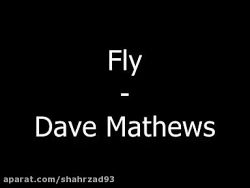 موسیقی the fly