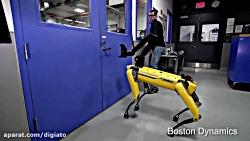 Testing Robustness