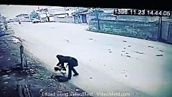 حمله سگ ولگرد به دختر