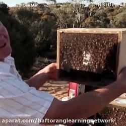 عسل وحشی زیر درخت توسط مرد عسلی