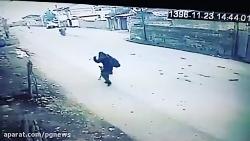 واکنش جالب یک دختر به حمله سگ ولگرد